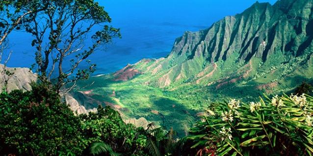 Film Offices Of The Hawaiian Islands